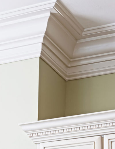 detail of expensive crown molding and dental molding